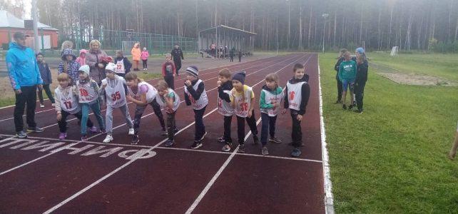 Легкоатлетический бег на дистанцию 800 метров